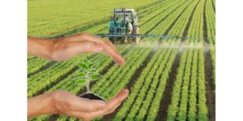 Как правильно вносить гербициды
