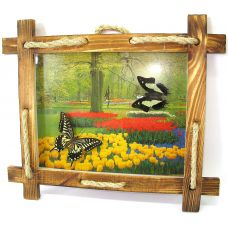 """Картина Бабочки в рамке на фоне (2шт) (28х23 см) (10"""") Mix"""