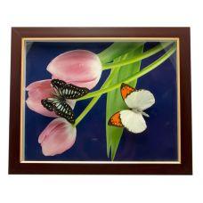 Картина Бабочки в рамке (28х23х2,5 см) Pink Wood