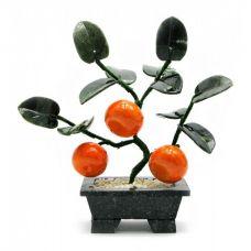 Дерево Счастья Мандарин (3 плода) (18х19х7 см)