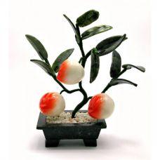 Дерево Счастья Персик (3 плода)(18х19х7 см)